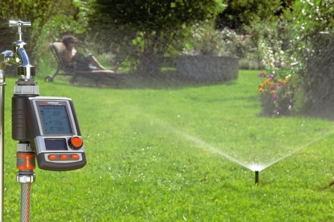 Ogród, który sam się podlewa