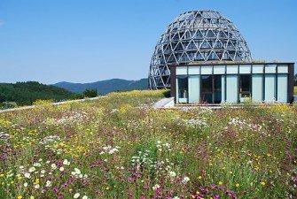 Rozwiązanie systemowe Dach naturalny