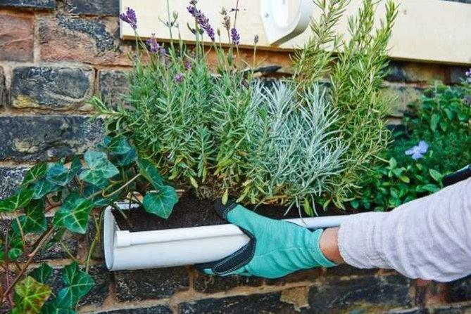 Pionowy ogród na tarasie lub balkonie - jak go zrobić samodzielnie
