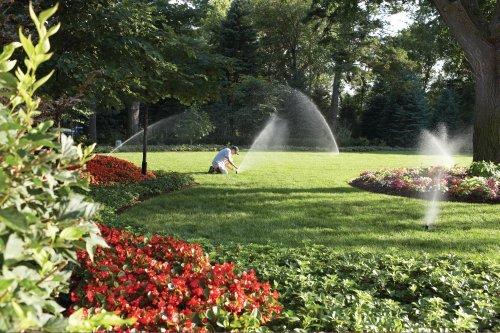 Czy odpowiednio nawadniasz swój ogród?
