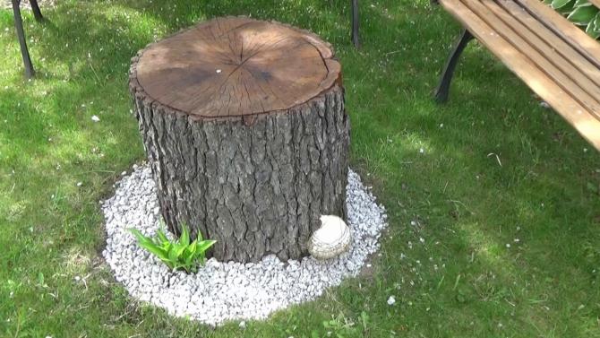 Stolik z pnia drzewa