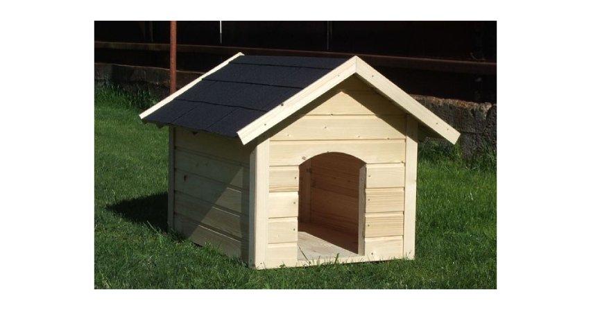Jak zbudować budę dla psa?