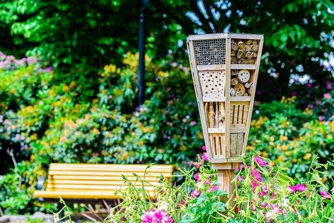 Hotel dla owadów – jak i z czego go zrobić