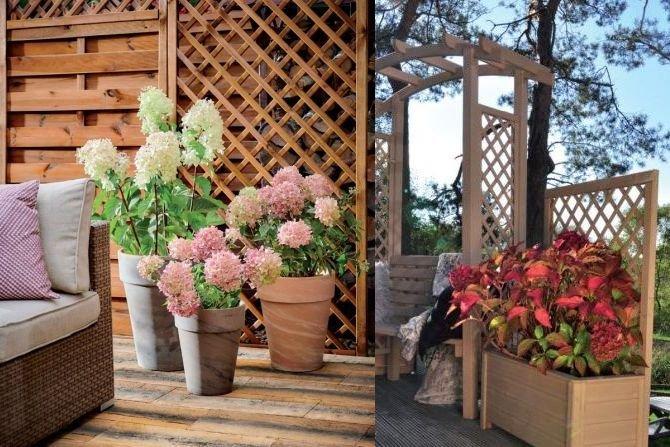 Zrównoważony ogród
