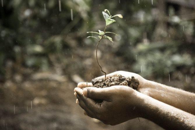 Odprowadzanie deszczówki do zbiornika  - sposób na suszę, podtopienia i oszczędność