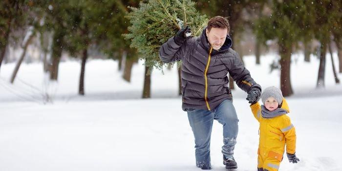 Rodzinna wyprawa po drzewko świąteczne