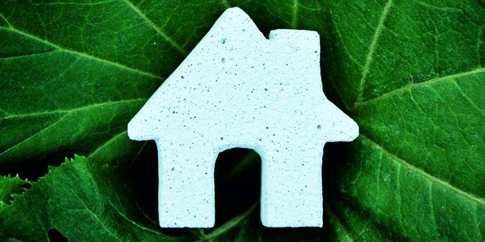 Dom z naturalnych materiałów – z czego powstają silikaty i beton komórkowy?