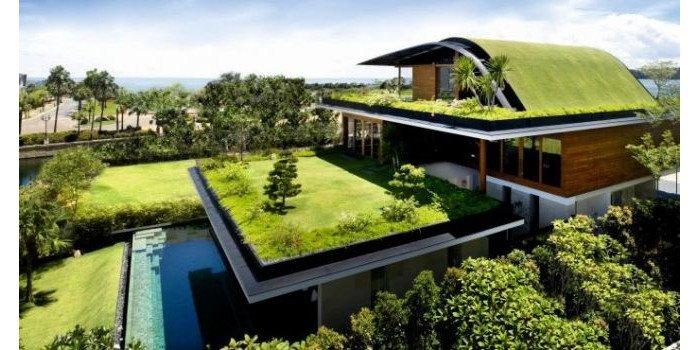 Zielony dach – zaprojektuj go razem zekspertami