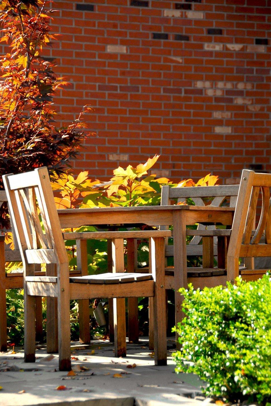 Zadbaj o drewno na wiosnę >>