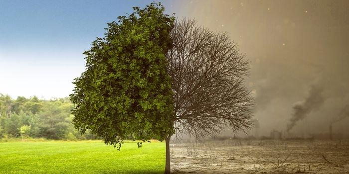 Jakość powietrza – nowe rekomendacje WHO