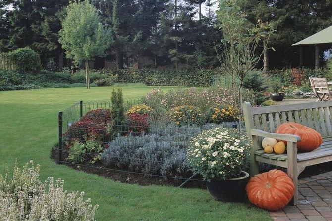 Siatki zabezpieczą przydomowe rośliny przed zniszczeniem przez gryzonie, psy lub bawiące się w ogrodzie dzieci Fot. Betafence