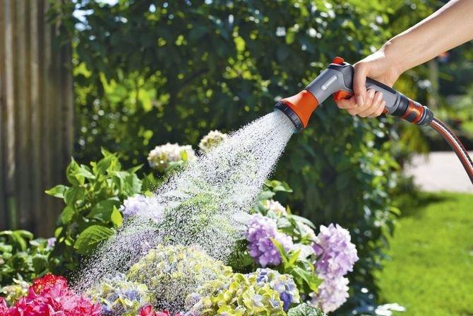 Podczas ciepłych miesięcy ważne jest odpowiednie nawadnianie roślin i trawnika Fot. Gardena