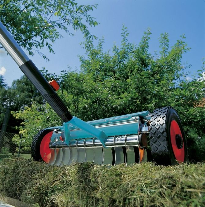 Zanim trawa zacznie wypuszczać liście, można ją odmłodzić za pomocą wertykulatora