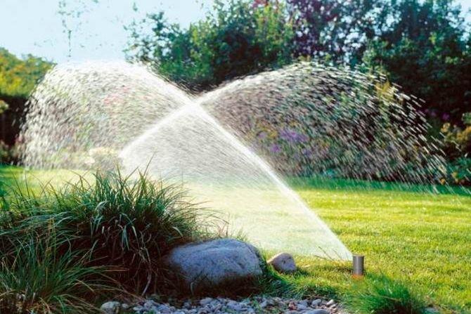 Jak prawidłowo nawadniać ogród? Fot. Gardena