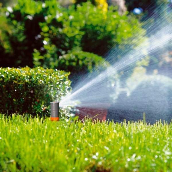 Na trawnikach świetnie spisują się zraszacze wynurzeniowe, czyli takie, które pod wpływem ciśnienia wody są wypychane ponad powierzchnię ziemi i w takiej pozycji pracują.