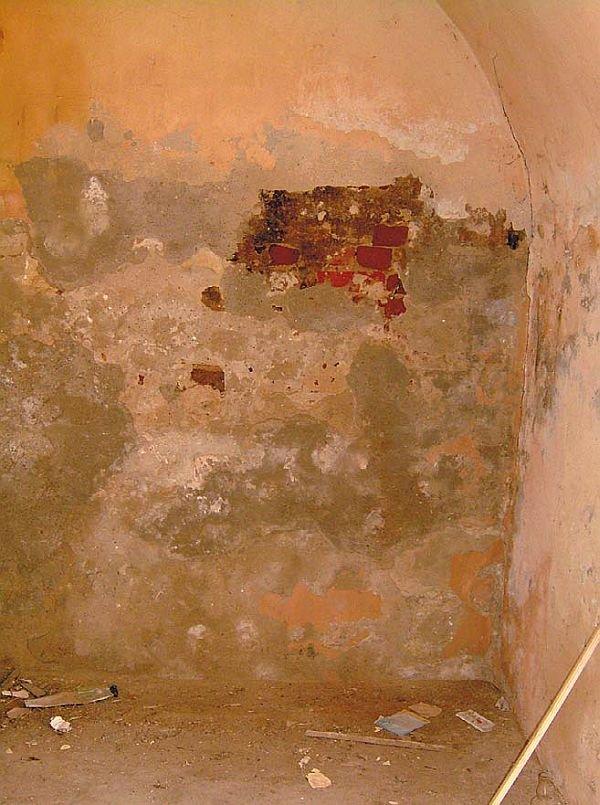 Zagrzybiona ściana w zawilgoconym budynku