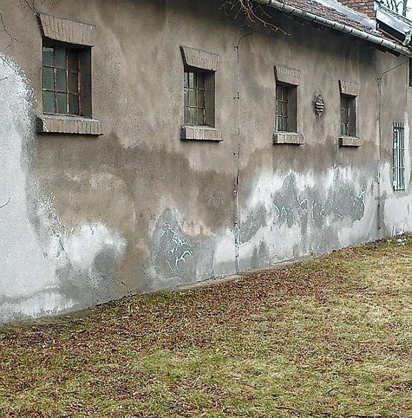 Widoczne plamy na skutek higroskopijnego poboru wilgoci przez zasoloną ścianę