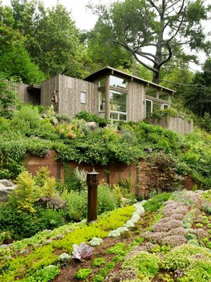 dom w gorach feldman architecture 10