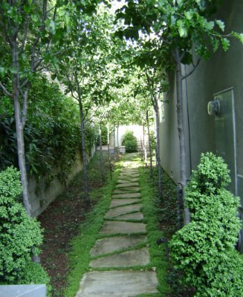 sciezka w ogrodzie frank and grossman landscape contractors