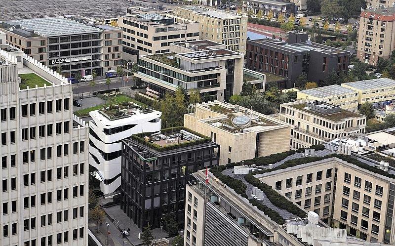 ekologiczne dachy zielone fot1