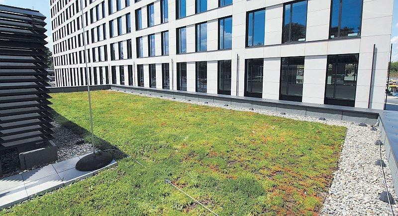 Opaski żwirowe na dachu ekstensywnym; fot. APK Dachy Zielone