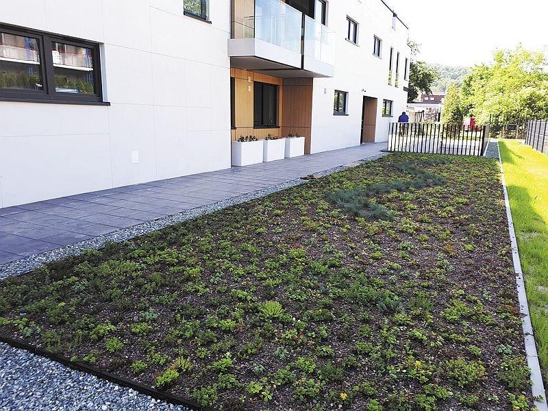 Na dachu zielonym część z substratem i roślinnością należy oddzielić od opasek żwirowych za pomocą trwałych profili perforowanych wykonanych z aluminium lub tworzywa sztucznego; fot. APK Dachy Zielone
