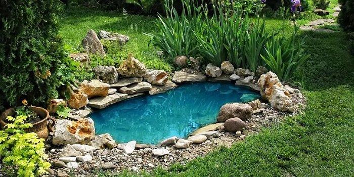 Zbiornik powinien znajdować się w miejscu, gdzie będzie miał właściwe nasłonecznienie Fot. Shutterstock