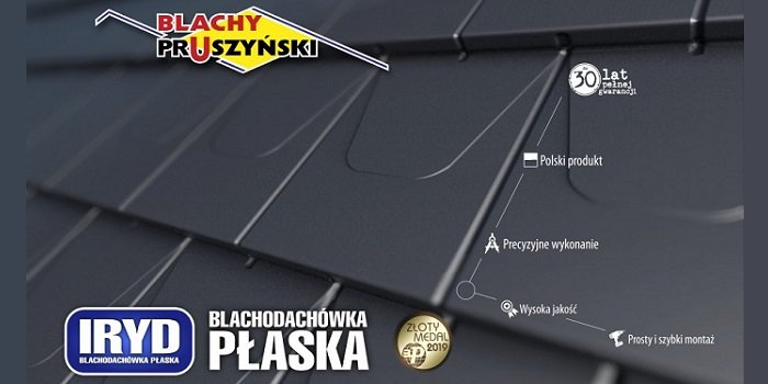 Blachy Pruszyński ze Złotym Medalem MTP 2019 r. Fot. Blachy Pruszyński