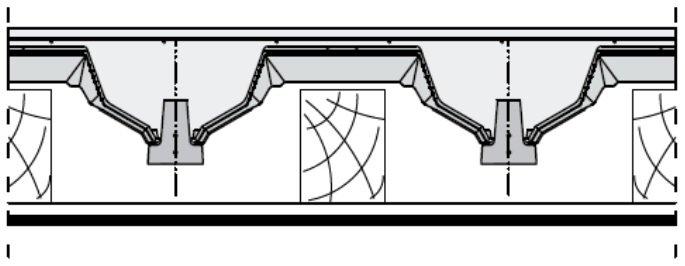 rector stropy 13
