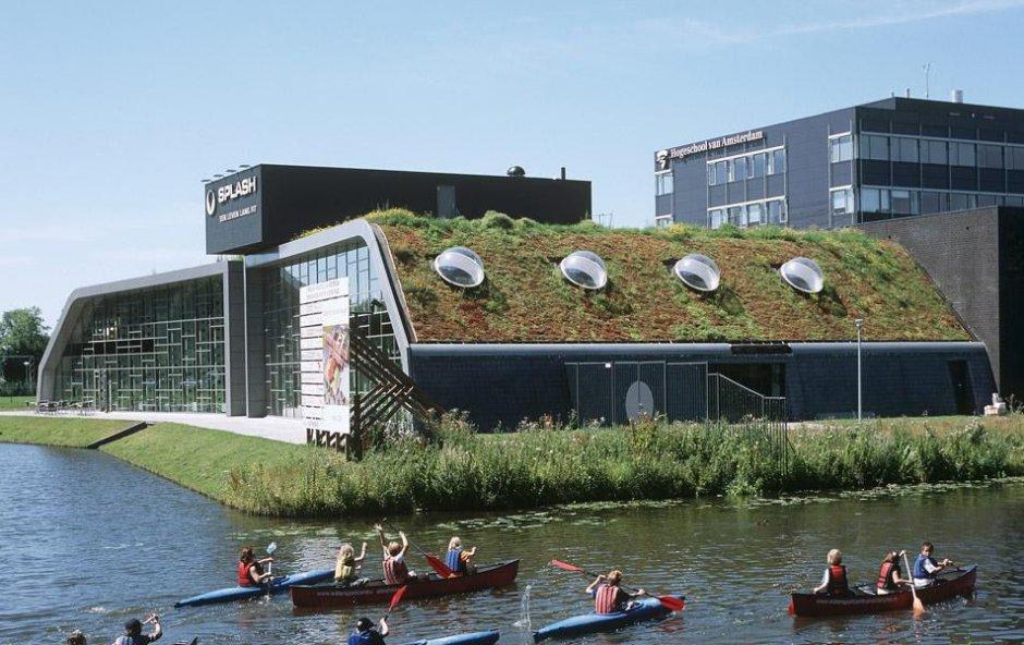 akademia optigruen dachy zielone